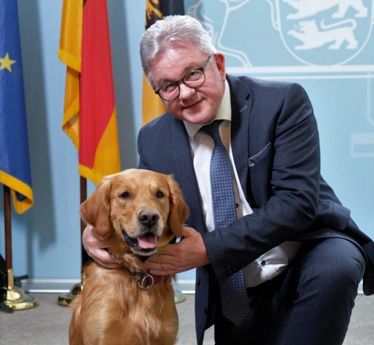 PM2080 19 scaled e1582122467466 768x709 - Ein Fall für Watson - ein Hund vor Gericht